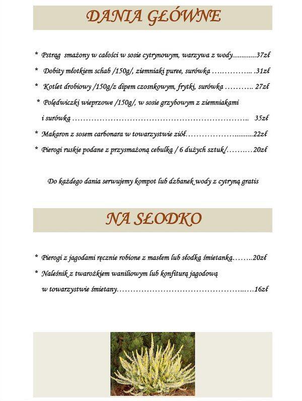 Menu Restauracja leśne Smaki Bory Tucholskie Zamrzenica